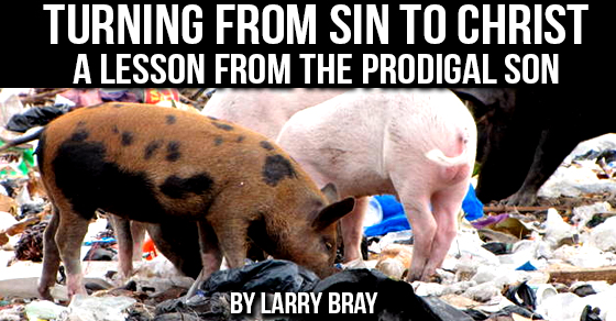 Turning from Sin to Christ – A Lesson from the Prodigal Son