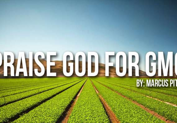 Should Christian's Eat GMOs?