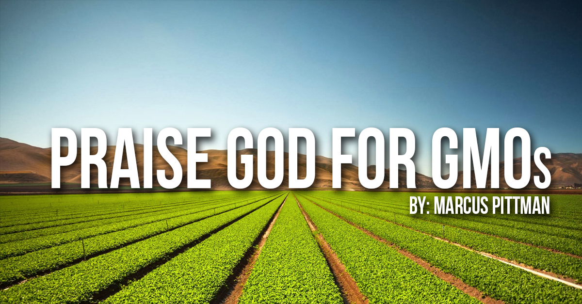 Should Christian's Eat GMOs?
